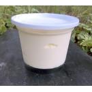 Crème Fraiche entière au lait cru, 1 pot 250 g