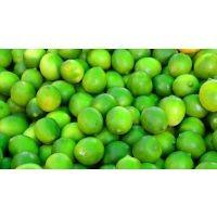 Citron vert bio, 1 pièce